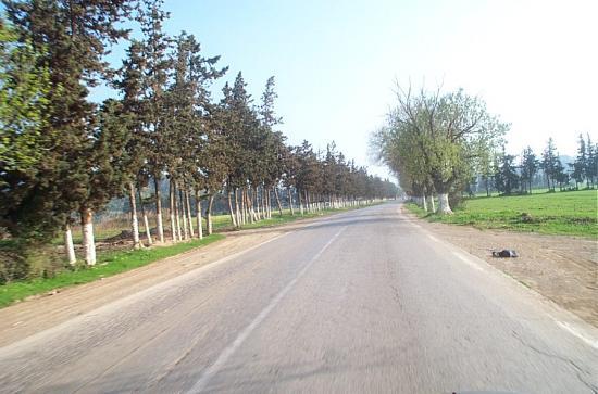 Route de Nador( Desaix)