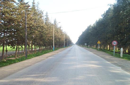 Route de la pepinière ( el karia )