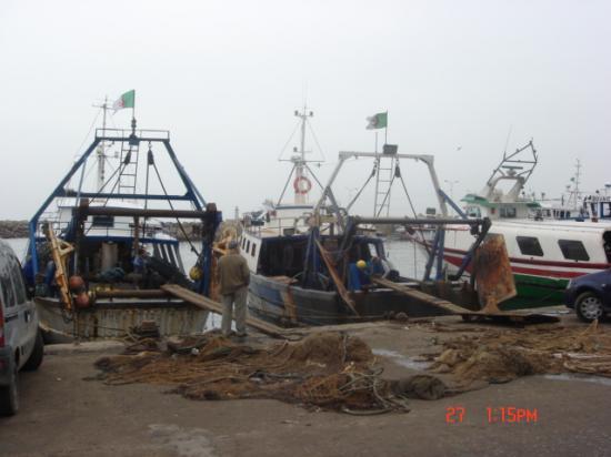 Bouharoun le port