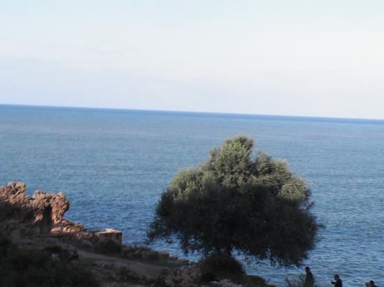 Vue sur mer ,Ruines