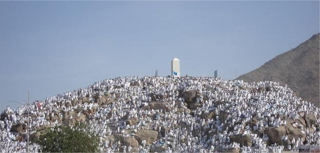 photo-arafat-mea.jpg